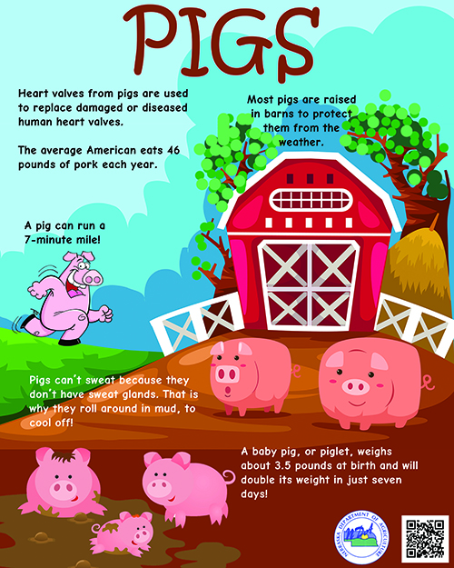 Facts About Farm Safety Just For Kids